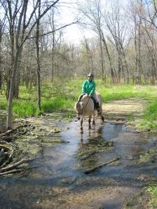 Tessie Crossing Water